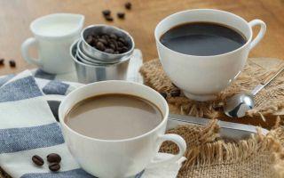 В чем отличие и что лучше: какао или кофе?