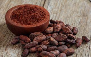 Из чего и как делают какао порошок?