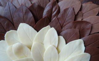 Как сделать шоколадные листья своими руками