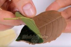 Шоколадный мусс в виде листочка.