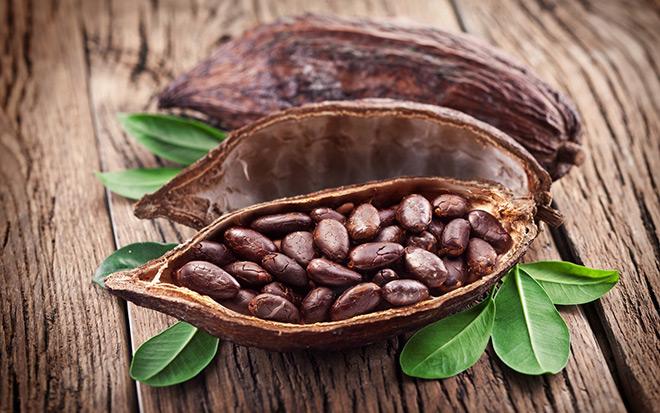 Какао бобы (cocoa beans )