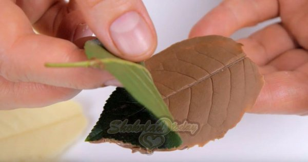 Фото shokoladniy tort tri shokolada 6.