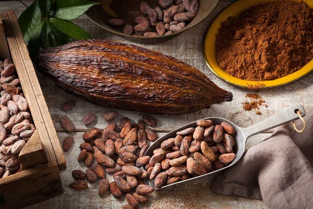 Фото kakao boby 2.