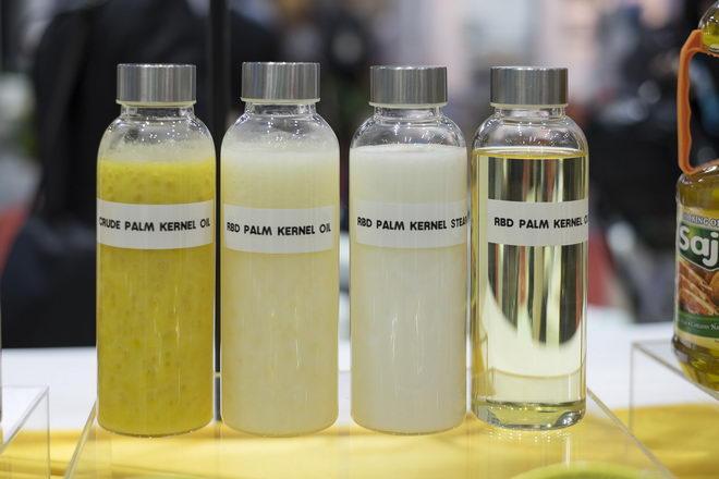 Фото palmovoe maslo raznovidnosti1.