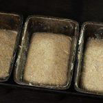 Фото testo dlya shokoladnogo hleba 3.