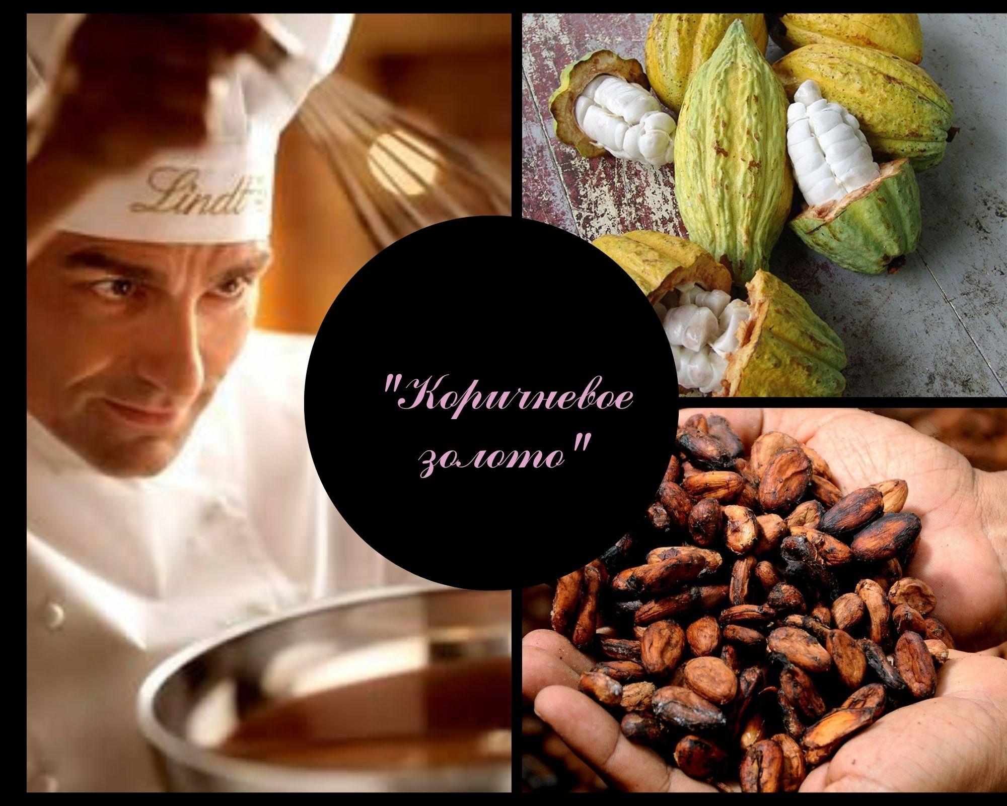 Фото Кондитер, зерна какао.