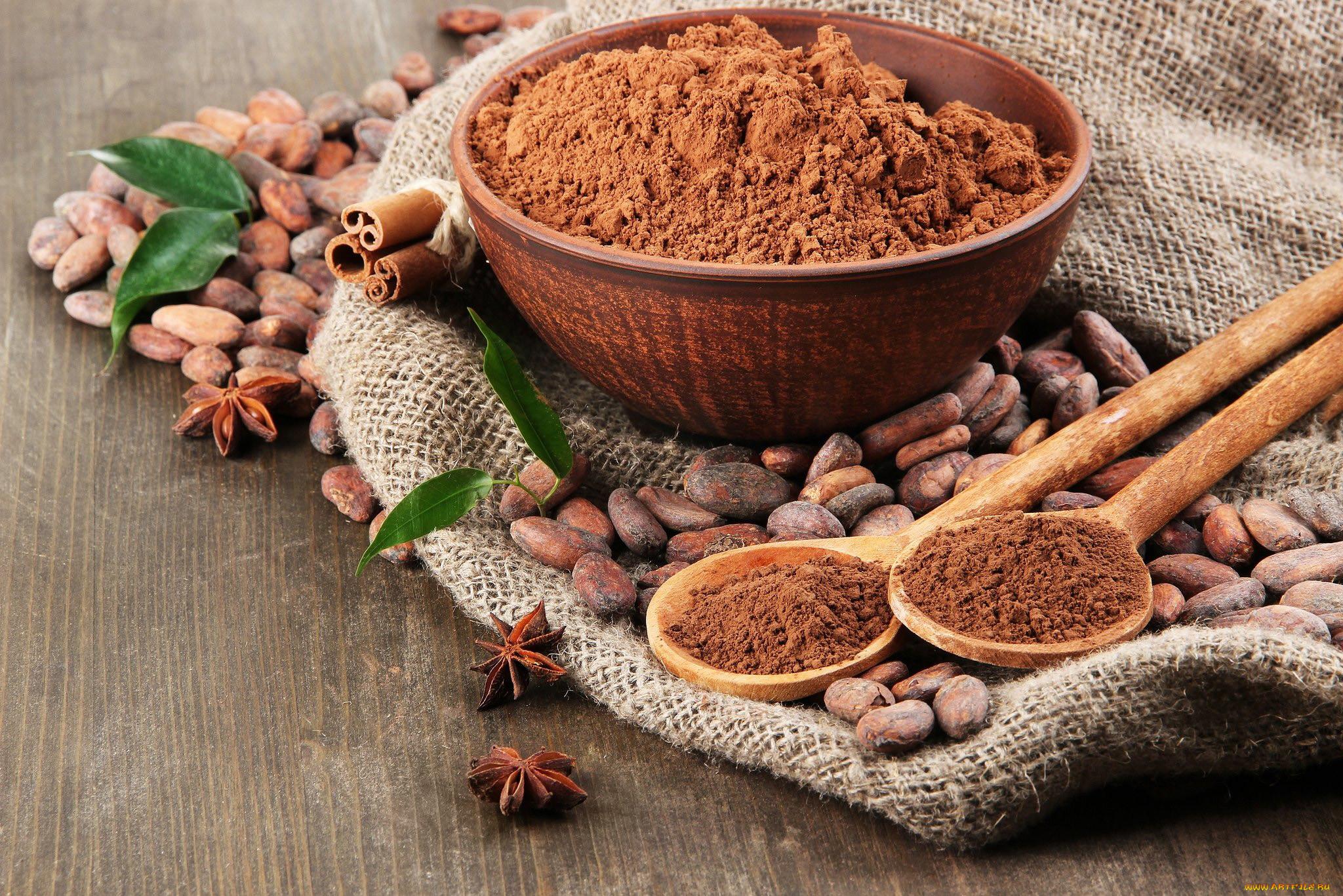 Фото какао в порошке.