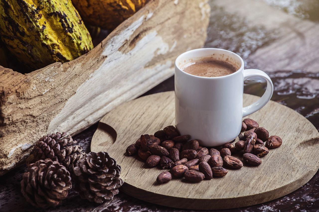 Фото какао бобы.