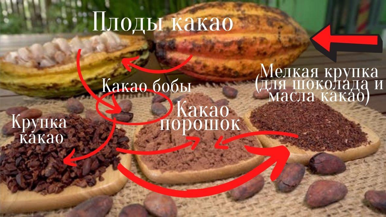 Фото posledovatelnost polucheniya tertogo kakao.