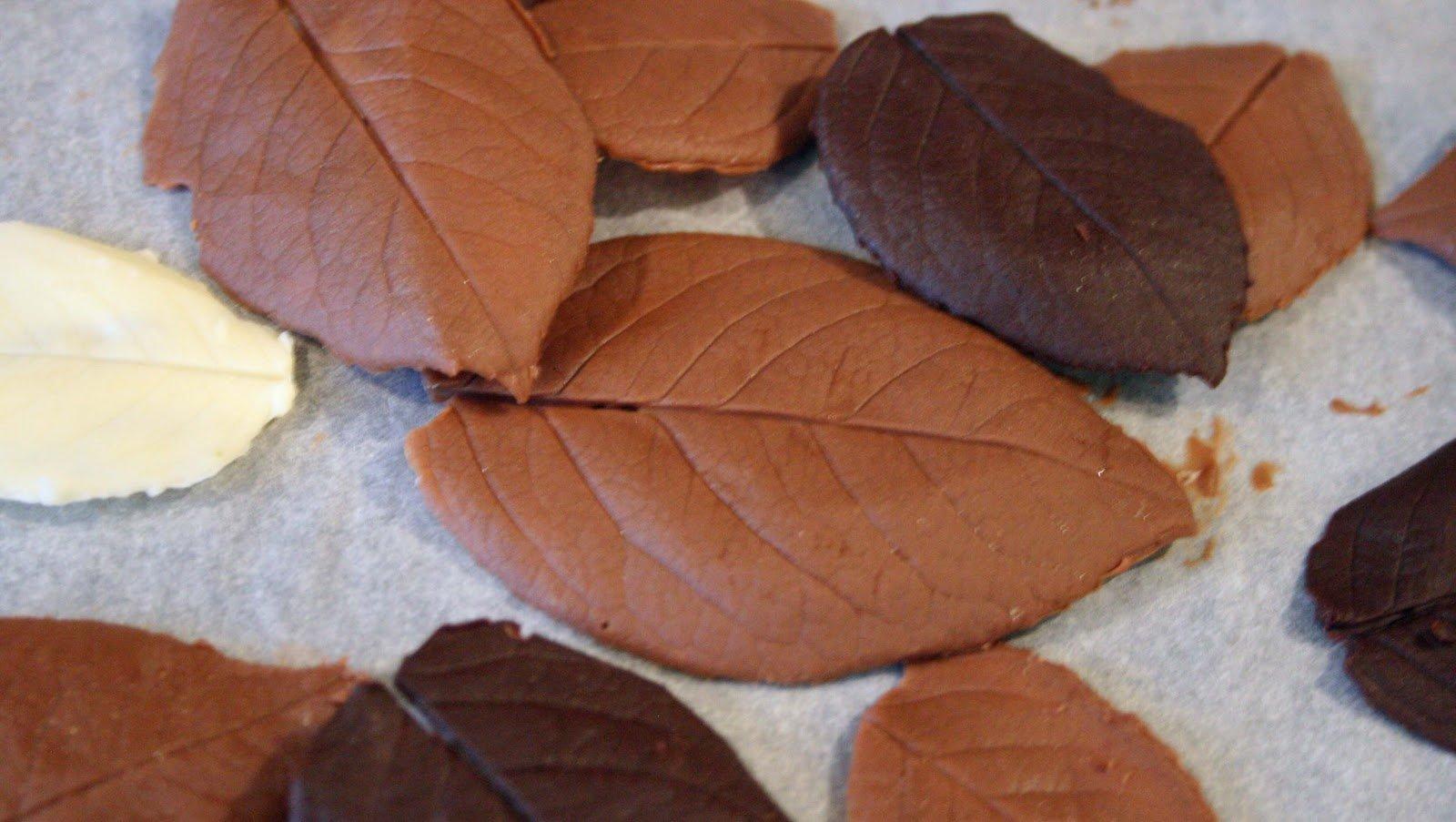 Фото шоколадные листья.