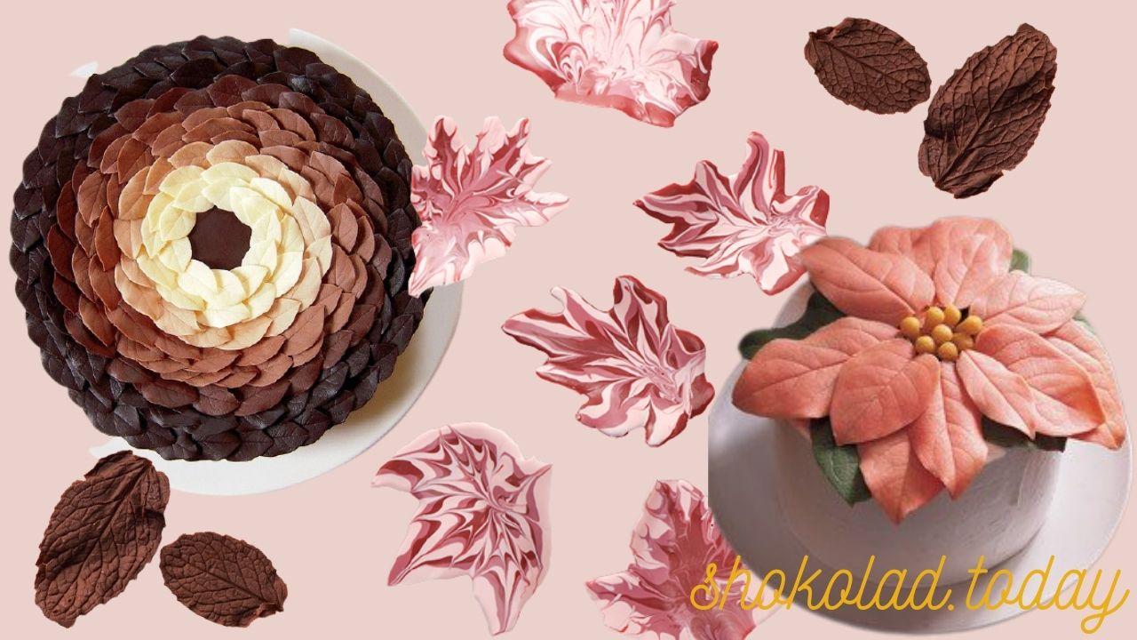 Фото tort i listiki iz shokolada.