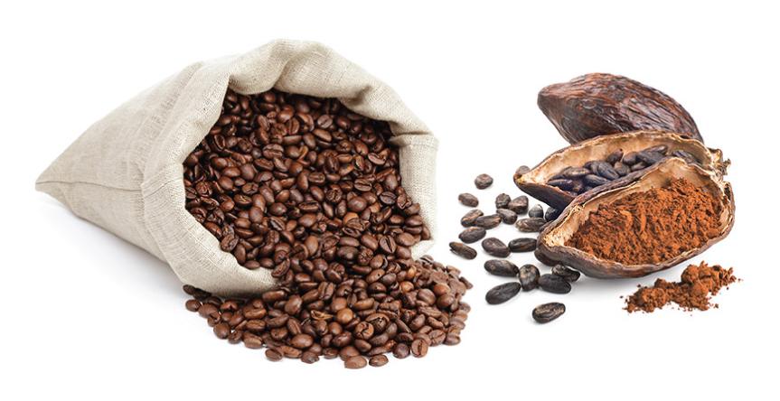 Фото зерна какао и кофе.